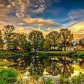 Reflections by Lechmoore Simms