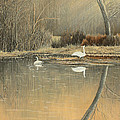 Reflections by Mary Ann King