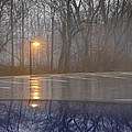 Reflections Of A Lamp On The Edge Of A Foggy Forest by Paddy Shaffer
