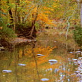 Reflections Of An Autumn Day by Kay Novy
