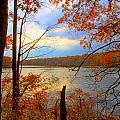 Reflections Of Autum by J Charles