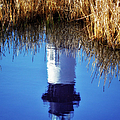 Reflections of Bodie Lighthouse- Outer Banks I