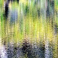 Reflections Of Fall 3 by Ed Weidman