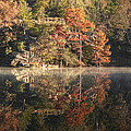 Reflections Of Fall by Cindy Rubin