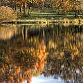 Reflections Of Fall by Lindley Johnson