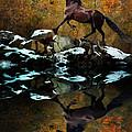 Reflections Of Fall by Melinda Hughes-Berland