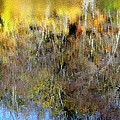 Reflections Of Fall1 by Ed Weidman