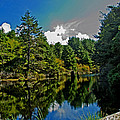Reflections On A Lake by Richard Risely