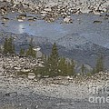Reflections On A Mountain Stream by Brian Boyle
