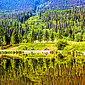 Reflections On A Summer Day - Vail - Colorado by Madeline Ellis