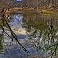 Reflections On A Warm Winter Day by Gary Holmes