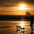 Reflections-peace At Sunset by Alan Conner