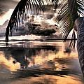 Reflections Through The Palm by Jim Rabenstine