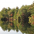 Reflections Two At Pearce Lake Breakheart by Barbara McDevitt