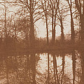 Reflections by William Henry Fox Talbot
