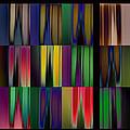Reflective Blurs by David Pantuso
