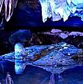 Reflective Cavern by Tara Potts