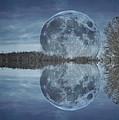 Reflective Paradise by Betsy Knapp