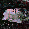 Reflective Skylight On A Small Pond Of Water # 1 by Miguel Conesa Osuna