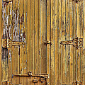 Refrigerated Boxcar Door by Marcia Colelli