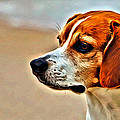 Regal Beagle by Alice Gipson