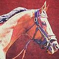 Regal Racehorse by Alice Gipson