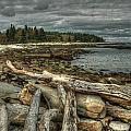Reid Beach by Michael Kirk