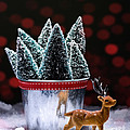Reindeer With Christmas Trees by Amanda Elwell