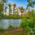 Relax By The Methow Rivers Edge by Omaste Witkowski