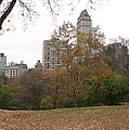 Relax In Central Park by Mihail Marcu