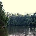 Relaxing Lake Landscape by Kim Fearheiley