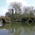 Remains Of Old Bridge Warwick by Tony Murtagh