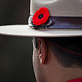 Remembrance Day by Chris Dutton