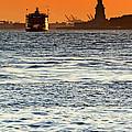 Remote Lady Liberty by Jaroslav Frank