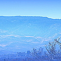 Reno Blues by Bobbee Rickard