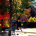 Reno Riverwalk In The Fall by Bobbee Rickard