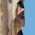 Repainted Desert - Phone Case Design by Gregory Scott