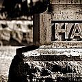 Rest Hart Bw by Henrik Lehnerer