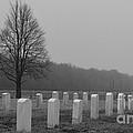 Rest In Peace Veterans by Renie Rutten