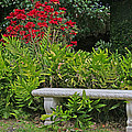 Restful Park Bench by John Orsbun
