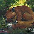 Resting Red Fox by Linda L Martin