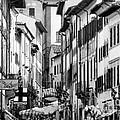 Restless In Arezzo-italy by Jennie Breeze