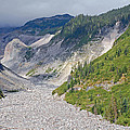 Restless Glaciers At Mount Rainier National Park by Connie Fox