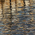 Retaining Wall Reflection by Mary Bedy