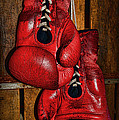 Retired Boxing Gloves by Paul Ward