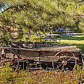Retired Wagon At Thousand Trails by Bob and Nadine Johnston