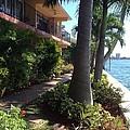 Retirement Bliss Boca Raton Fl. by Lyn Dee