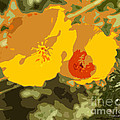Retro Abstract Poppies 3 by Artist and Photographer Laura Wrede