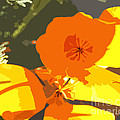 Retro Abstract Poppies by Artist and Photographer Laura Wrede