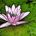 Retro Water Lilly by Bob Christopher